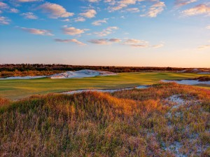 Streamsong shot